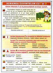 plansa_pronumele_personale-scrierea_cuvintelor_cu_i_si_a2