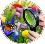Explorăm natura și mediul înconjurător