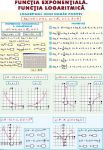 _functia_logaritmica_integrala_definita_(duo)_