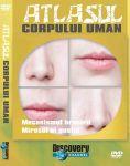 (mijloace_audiovizuale_cd_dvd_lectii_interactive)_atlasul_corpului_uman_4_(mecanismul_hranirii,_mirosul_si_gustul_)1