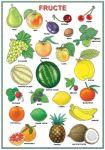 Planșă. Fructe